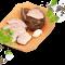 Pastrama de rata - Produse naturale